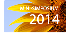 Mini Symposiums