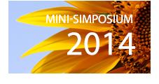 Mini Symposiums